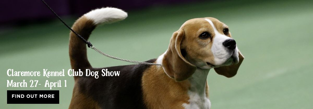 Claremore Kennel Club Dog Show at the Claremore Expo Center